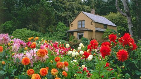 Flowers Of Garden Garden Flower With House Http Refreshrose