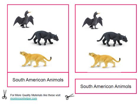 montessori printables animals montessori south american animals printables age 3 to 6