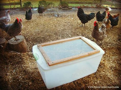 backyard brooder box 143 best images about outside pens fences buildings on