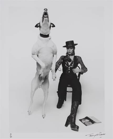david bowie dogs museum
