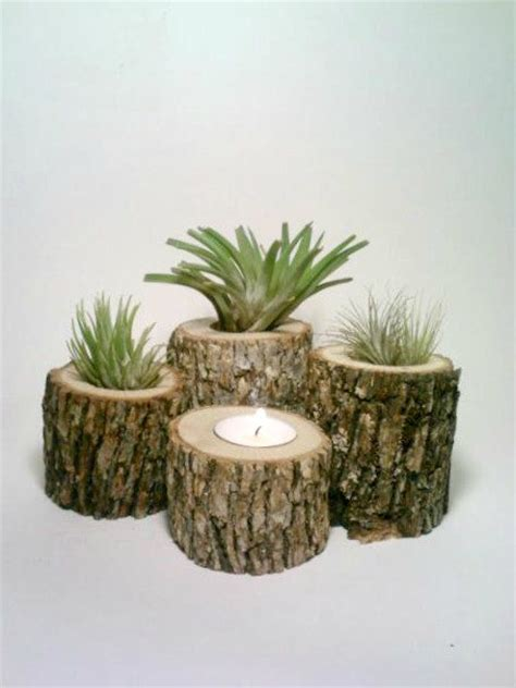 Plant Holder - air plant holder rustic wedding from deerwood creek gifts