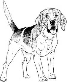 printable 30 realistic dog coloring pages 4602 printable dogs coloring pages realistic