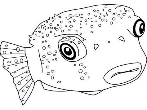 puffer fish coloring pages getcoloringpages com
