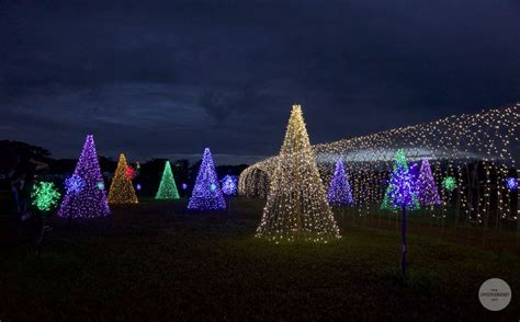 lights sounds plus other holiday specials in nuvali this