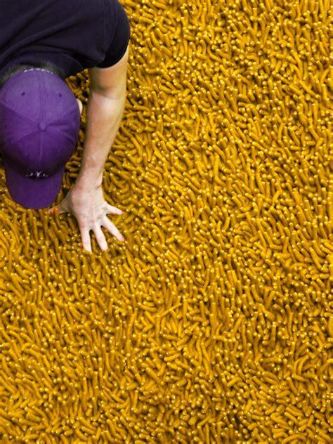 mustard colored rugs mustard colored rugs home decor