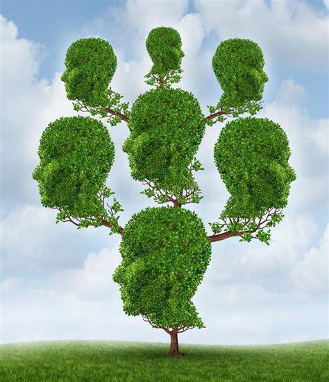 Family Tree Royalty Free Stock Photo Image 31671185 Genealogy Stock Photos Royalty Free