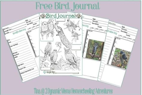 printable bird journal pin by sandra easterling on bird watching pinterest