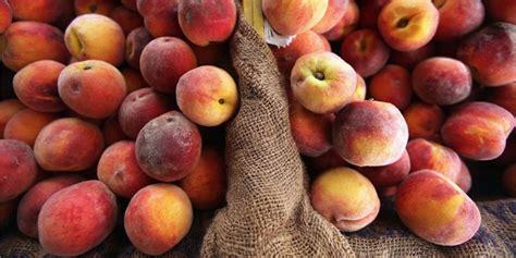 alimentos para el hipertiroidismo alimentos recomendados para el hipertiroidismo