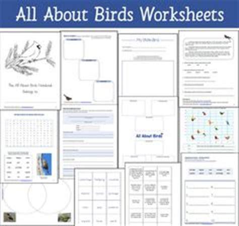 1000 Images About Nature Study Birds On Pinterest Worksheets Audubon