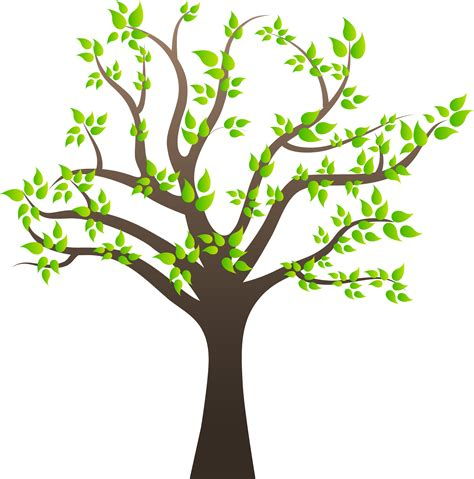 tree images clip tree png images quality transparent pictures png only
