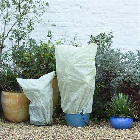 buy winter fleece plant covers delivery by crocus - Abdeckung Pflanzen Winter