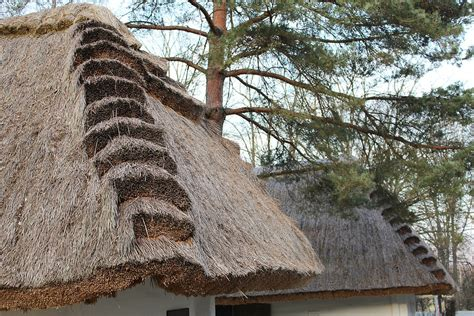 straw thatched roof thatched roof straw 183 free photo on pixabay