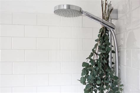 Turn Your Shower Into A Steam Room by Turn Your Shower Into A Steam Room Dose