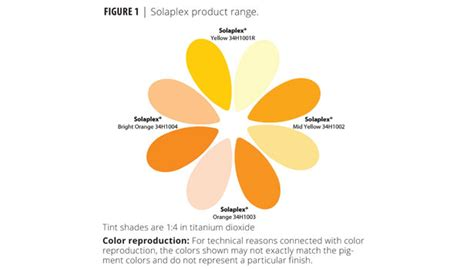 types of orange color types of orange color types of orange color interesting which came orange the colour or