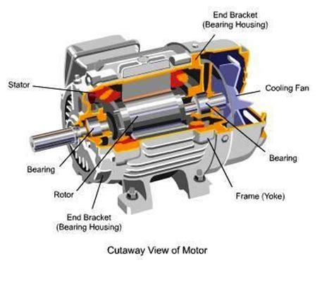 parts and function of electric motor cutaway view of motor knowledge cutaway