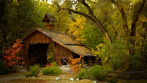 The Cabin In The Woods Free by Cabin In The Woods Wallpaper Reviews News Tips And