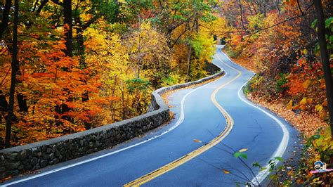 beautiful road the world s most beautiful asphalt roads