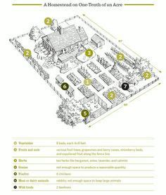 homestead layout plans on 1 acre or less 1000 images about farm layout inspirations on homesteads acre and small farm