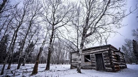 Snowy Cabin In The Woods by Cabin In The Snowy Woods Feelgood