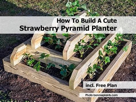 Build A Strawberry Planter by How To Build A Strawberry Pyramid Planter