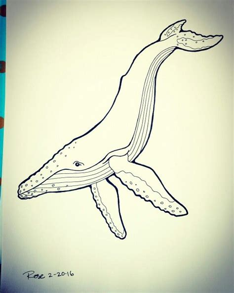 humpback whale tattoo designs humpback whale freehand ink drawing my artwork