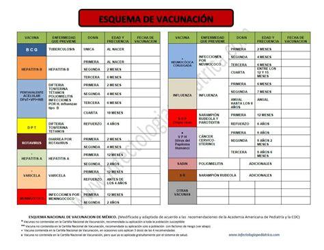cuadro de vacunas cartilla de vacunacion mexico imagui