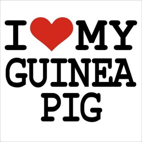 i my i my guinea pig t shirt