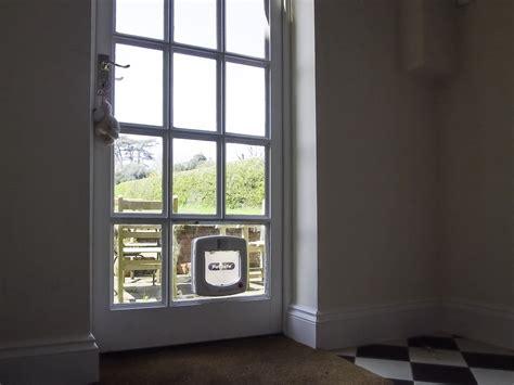 flap in glass door cat flap in glass door untitled document www