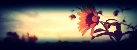 imagenes retro para portada de facebook girasol portada para facebook yalil 233 loaiza