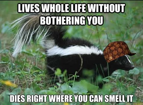 Skunk Meme - scumbag skunk memes quickmeme
