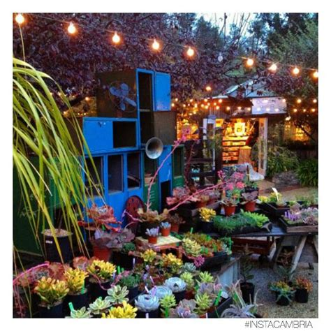 Garden Shed Cambria by 1000 Images About Shop In Cambria On Gardens