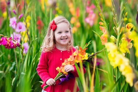 the flower childs play child picking fresh gladiolus flowers stock photo image of fall outside 59487270
