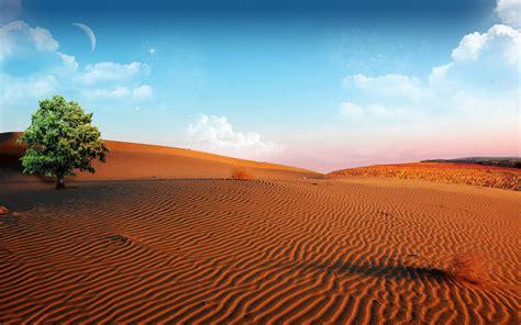 Desert Wallpaper 16484 1680x1050 px ~ HDWallSource.com