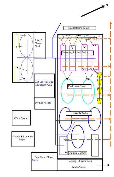 layout of hatchery fish hatchery design exle