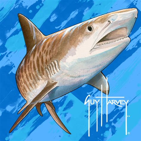 shark painting 301 moved permanently