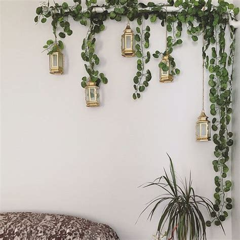 Vines For Decoration by 25 Best Ideas About Leaf On Best Plants