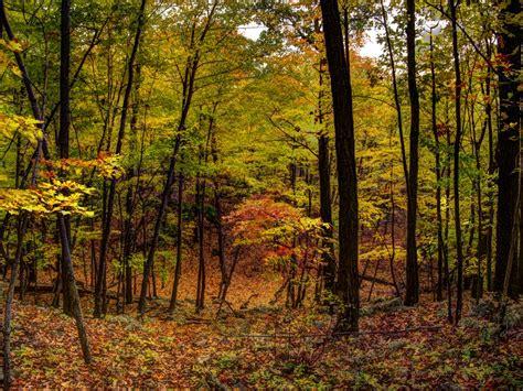 parks in orange county parks in orange county new york