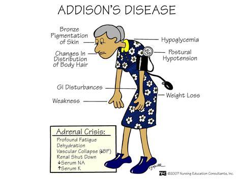 addisonian crisis nursing 3122 gt holden gt flashcards gt chapter 65 studyblue