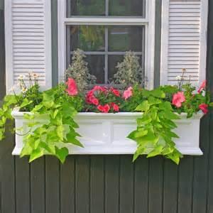 48 inch window box mayne 48 inch rectangle polyethylene fairfield window box