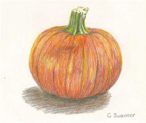 pumpkin drawing pumpkin drawing by c l swanner