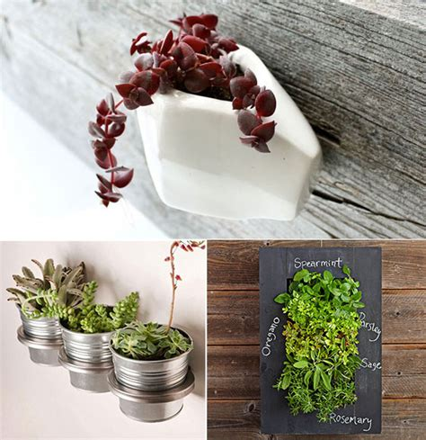 unique planters unique wall planters for urban spaces