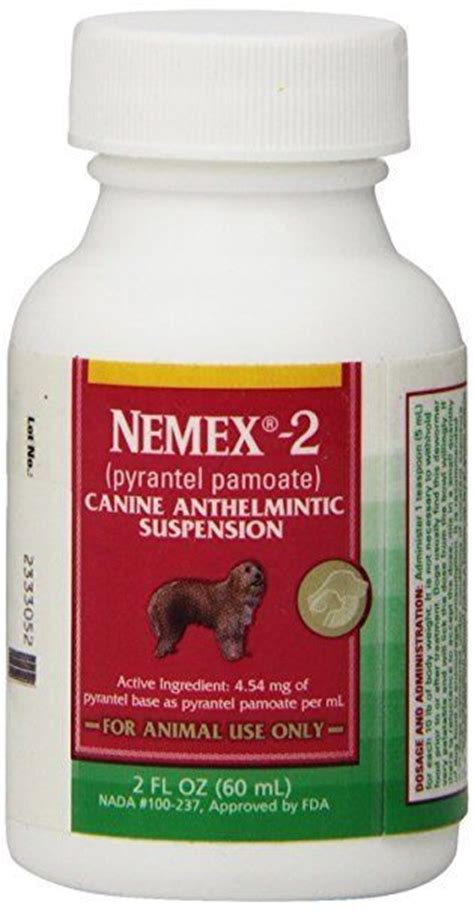 pyrantel for dogs nemex 2 pyrantel pamoate liquid wormer 2 oz ebay