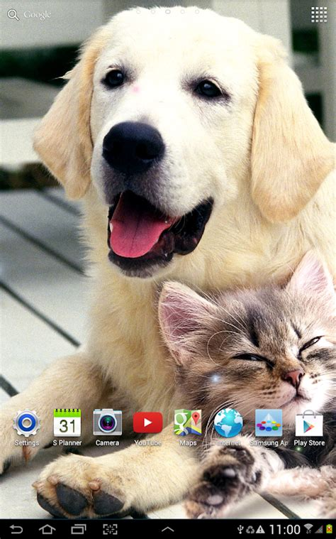 Dog Wallpapers Apps On Google Play | dogs wallpaper android apps on google play