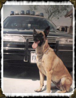 Florida Highway Patrol Arrest Records K 9 Florida Highway Safety And Motor Vehicles