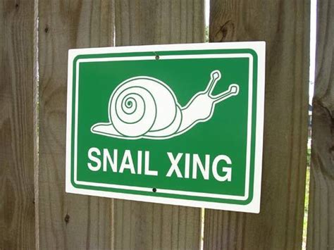 doodle crossing sign snail crossing sign snail xing etsy signs and snails