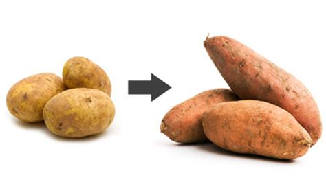 carbohydrates yams sweet potatoes sweet potato vs regular healthiest potato junkies