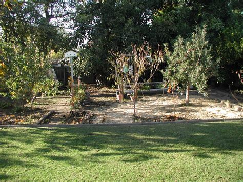 fruit trees for sale in michigan whittier michigan park home for sale