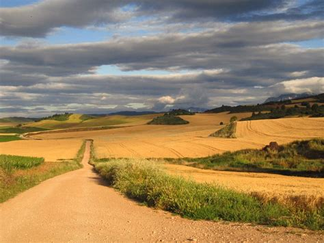 camino di santiago cammino