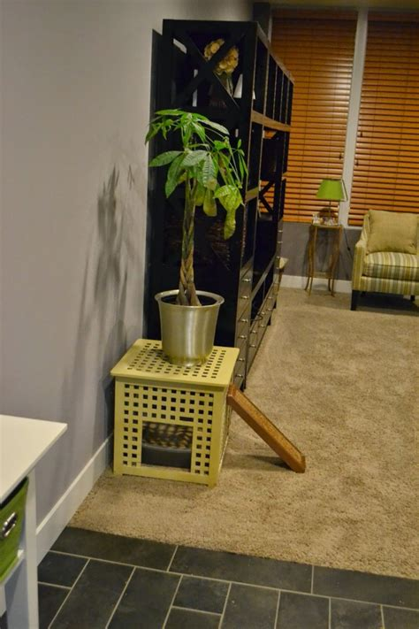 simple diy kitty litter boxes  loos  ikea units