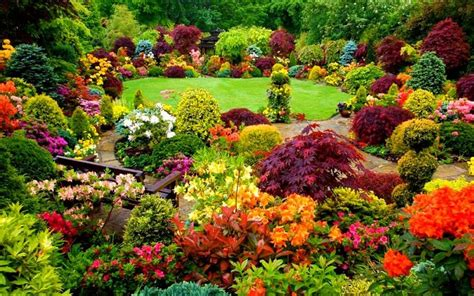 Flower Garden In Stunning Fall Colors Flowers Yard Fall Flower Garden